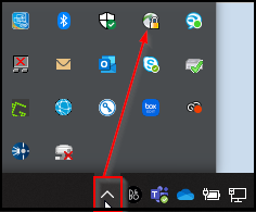 VPN Icon in system tray